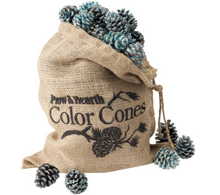 Plow & Hearth Color-Changing Fireplace Cones, 2lb. Bag