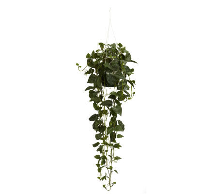 Philodendron Hanging Basket Plant by Nearly Natural