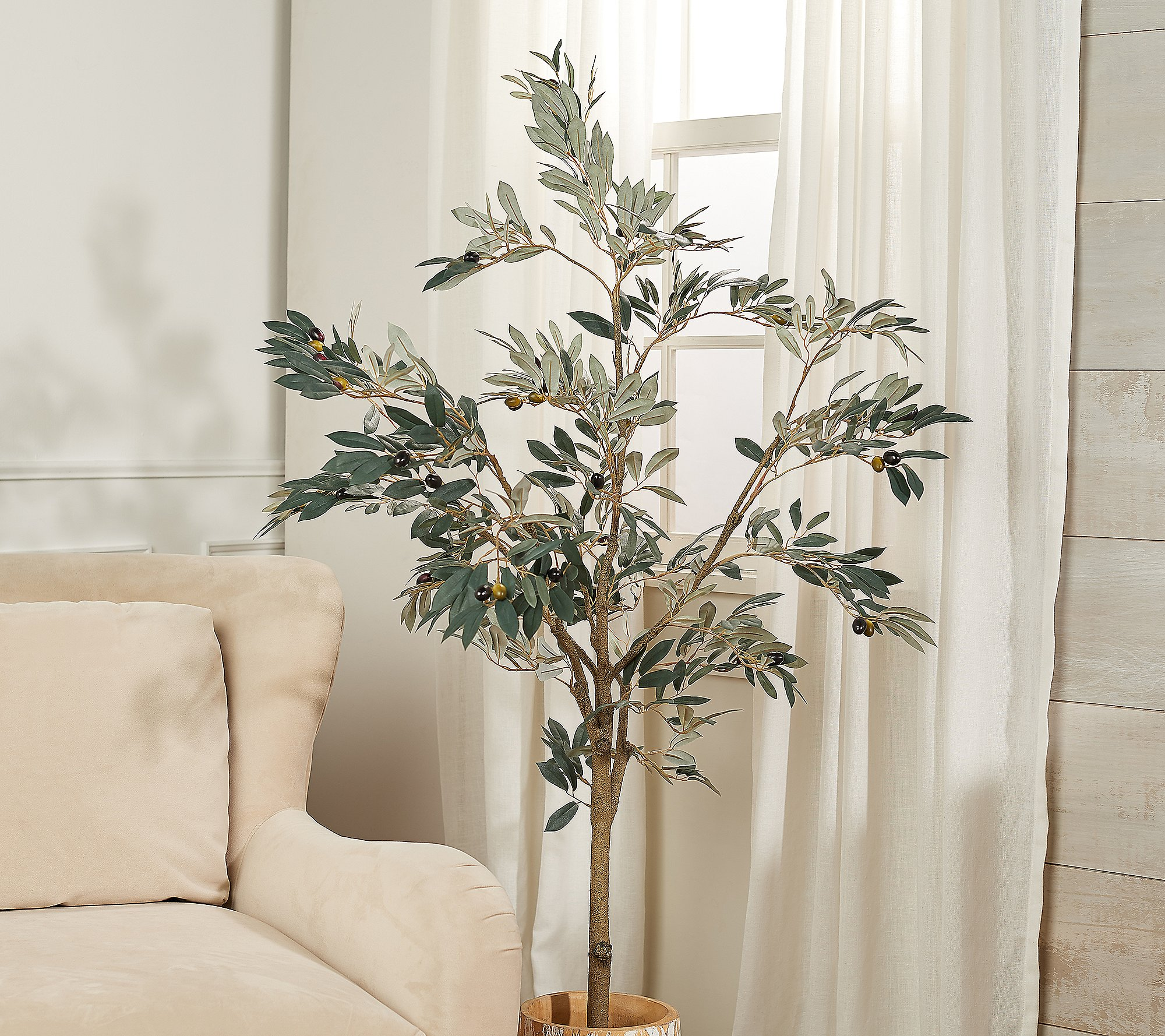 Shop 5' Faux Olive Leaf Tree in Starter Pot by Valerie from QVC on Openhaus