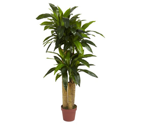 4' Corn Stalk Dracaena Silk Plant by Nearly Natural