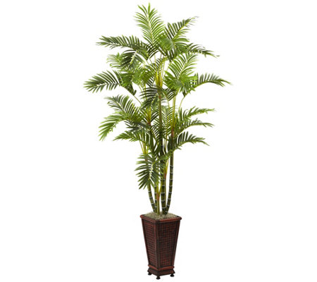 6 5 Areca With Decorative Planter By Nearly Natural