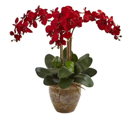 Seasonal Triple-Stem Orchid Arrangement by Nearly Natural
