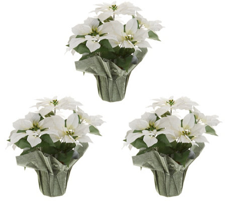 """As Is"" Anniversary Set of 3 18"" Faux Poinsettia Plants"