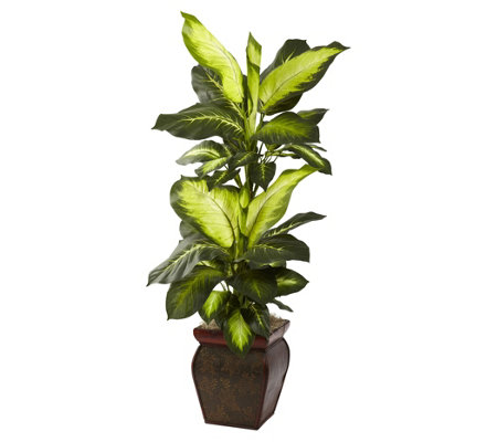 Golden Dieffenbachia w/ Decorative Planter by Nearly Natural