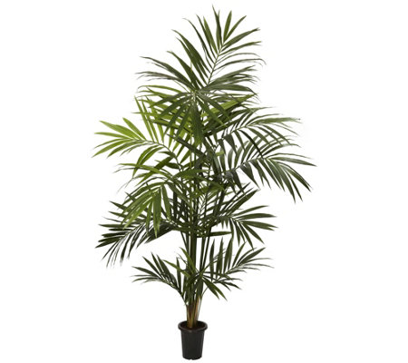 7 Kentia Palm Silk Tree By Nearly Natural