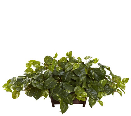 Pothos Window Box Silk Plant by Nearly Natural