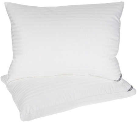 Stay by Stacy Garcia S/2 Standard/Qn Duet of Down Luxury Pillows