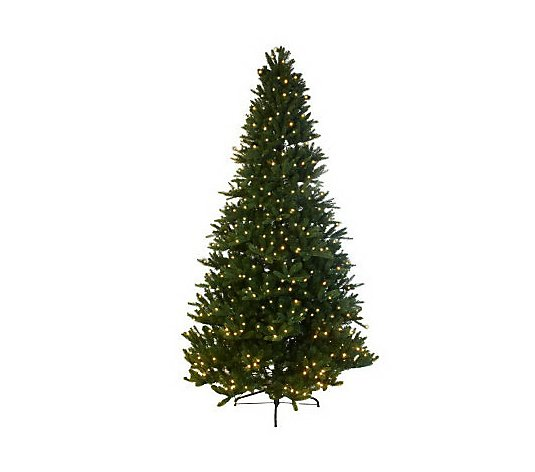 Mr. Christmas Wisconsin Fir 6.5'Pre-Lit LED Tree with 5 Year LMW