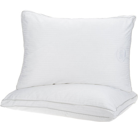 Serta Perfect Sleeper S/2 Luxury Down Illusion Std/Qn Pillows