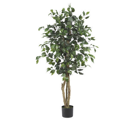 4' Ficus Tree by Nearly Natural