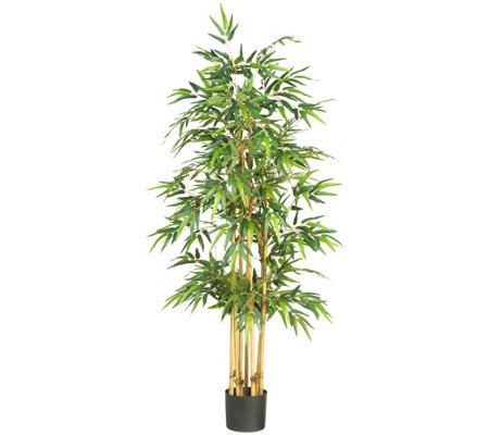 "64"" Bamboo Tree by Nearly Natural"