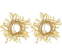 """As Is"" Scott Living Set of 2 Branch Fairy Micro Light Strands - H213962"