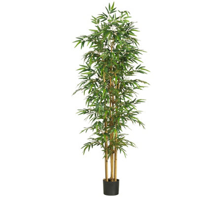 "75"" Bamboo Tree by Nearly Natural"