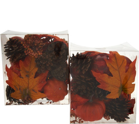 Set of 2 Pumpkin, Leaf and Pinecone Filler in Boxes by Valerie