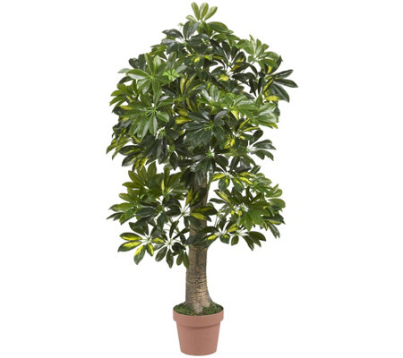 4' Real Touch Schefflera Tree by Nearly Natural