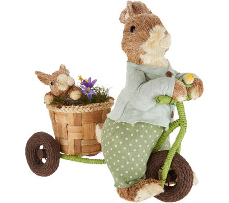 Anniversary Spring Sisal Brother Bunny on Bike by Valerie