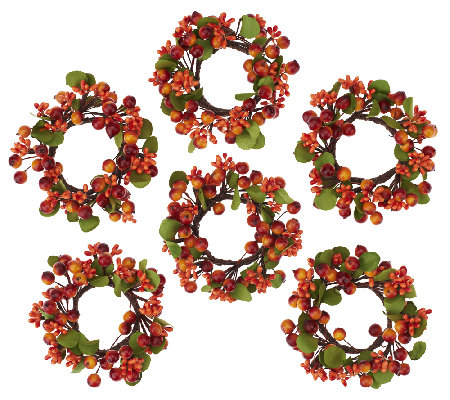 6 piece autumn berry and boxwood napkin rings by valerie page 1