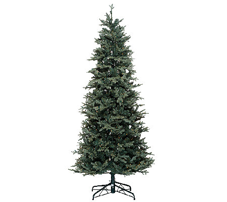 Bethlehem Lights Slim Blue Spruce Christmas Tree