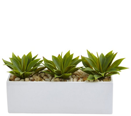 Agave Succulent in Rectangular Planter by Nearly Natural