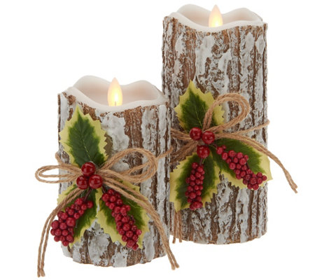 Candle Impressions Mirage Gold S/2 Winter Bark Candles