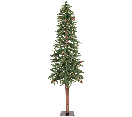 5' Prelit Frosted Alpine Berry Tree by Vickerman