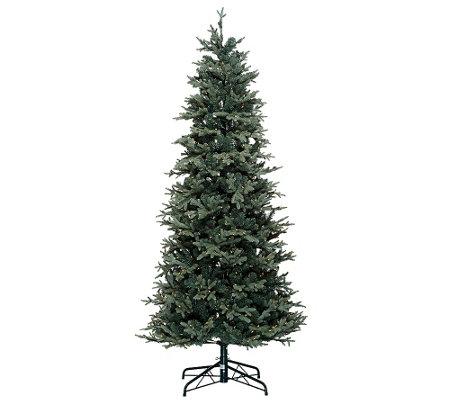 Bethlehem Lights 7.5' Slim Blue Spruce Christmas Tree - Bethlehem Lights 7.5' Slim Blue Spruce Christmas Tree - Page 1 €� QVC.com