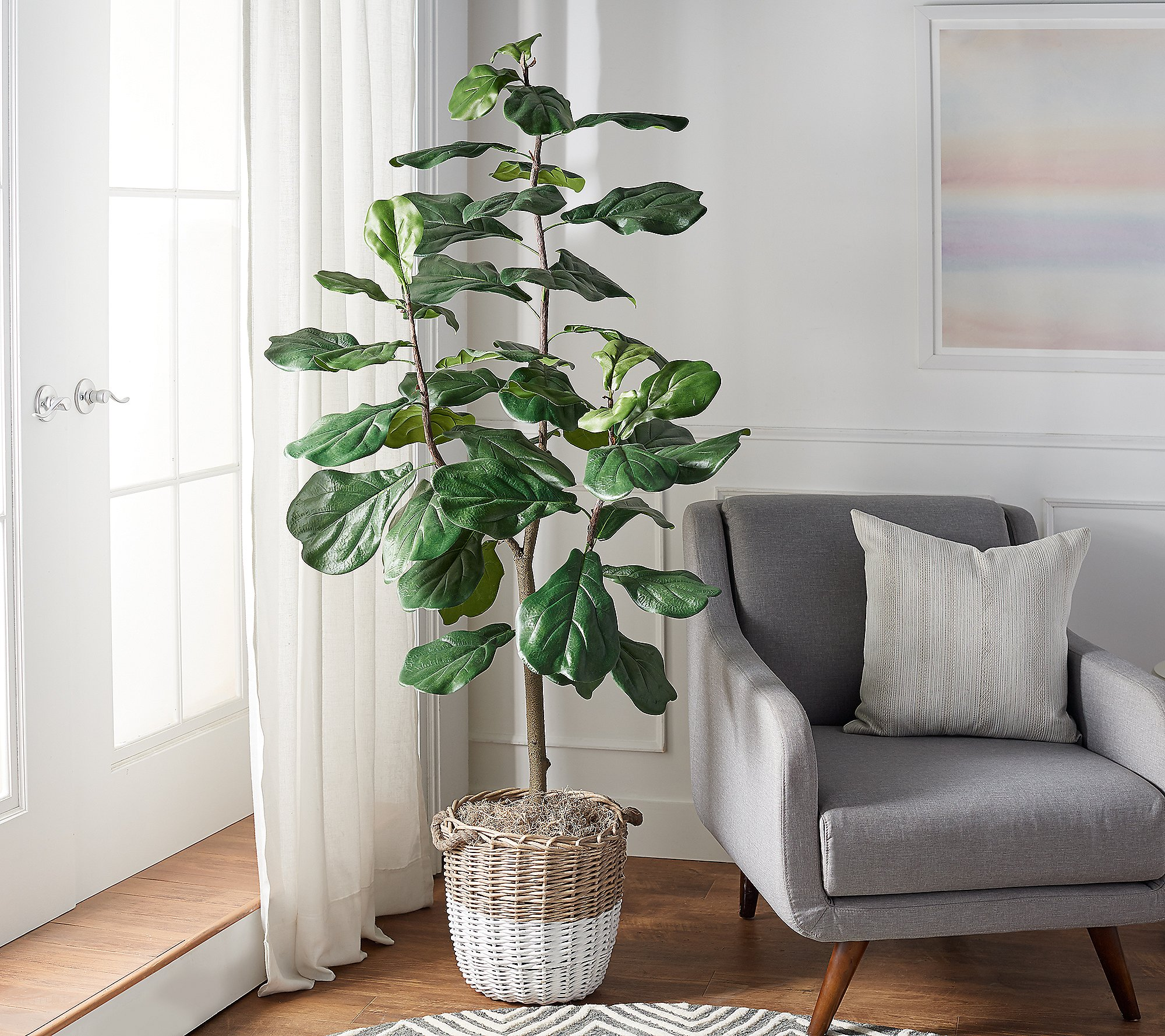 Shop 6' Faux Fiddle Leaf Tree in Starter Pot by Valerie from QVC on Openhaus