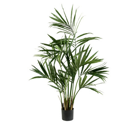 5 Kentia Palm Silk Tree By Nearly Natural
