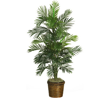 "56"" Areca Tree w/Basket by Nearly Natural"