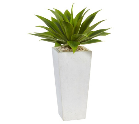 Agave in White Planter by Nearly Natural