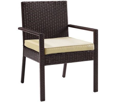 Palm Harbor Outdoor Wicker Dining Chair - Set of 2