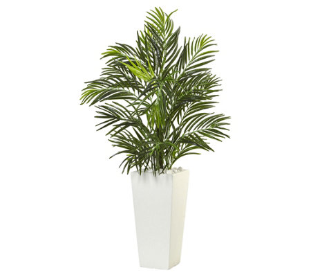 Areca Palm in White Square Planter by Nearly Natural