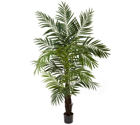 6 Areca Palm Tree By Nearly Natural
