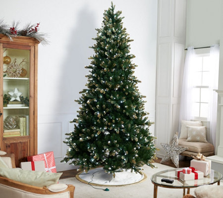 Casa Zeta-Jones 9' Doulgas Fir LED Function Frosted Tree