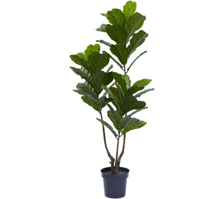 "65"" Indoor/Outdoor Fiddle Leaf Tree by Nearly Natural"