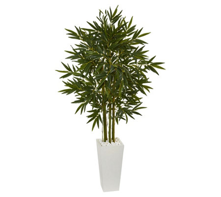 6 Bamboo Tree In White Tower Planter By Nearlynatural