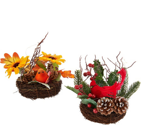 Set of 2 Illuminated Nests w/ Birds & Flowers by Valerie