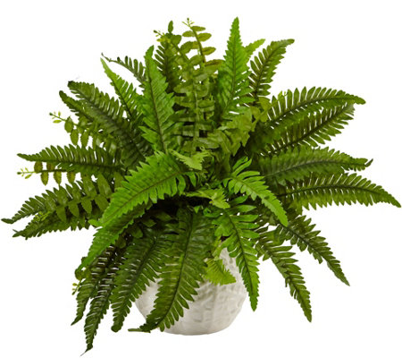 Boston Fern in White Planter by Nearly Natural