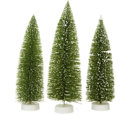 """As Is"" Set of 3 Graduated Bottlebrush Trees by Valerie"