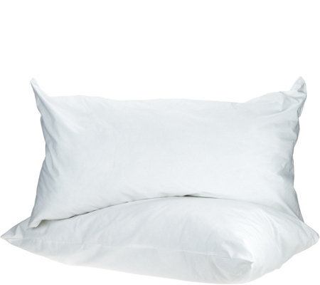 GX Bedding Set of 2 King Suspension Pillows