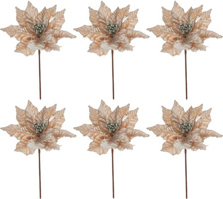 "Set of 6 12"" Velvet Glittered Poinsettia Picks"