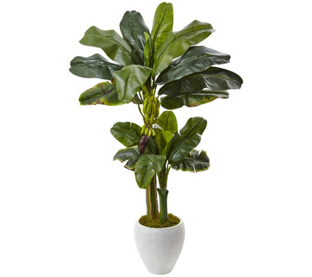 Double Stalk Banana Tree in White Planter by Nearly Natural