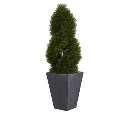 4' Cypress Double Topiary in Planter by NearlyNatural