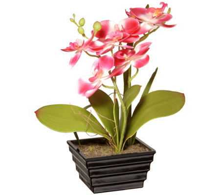 "National Tree Company 12"" Pink Orchid Flower"