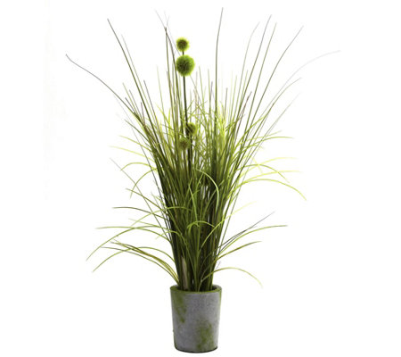 Grass Dandelion With Cement Planter By Nearlynatural