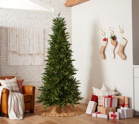 Best Christmas Tree Lights.Santa S Best 7 5 Wrgb Alberta Spruce Starry Light Christmas Tree Qvc Com