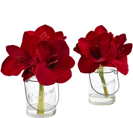 Set of 2 Amaryllis in Glass Vase by Nearly Natural