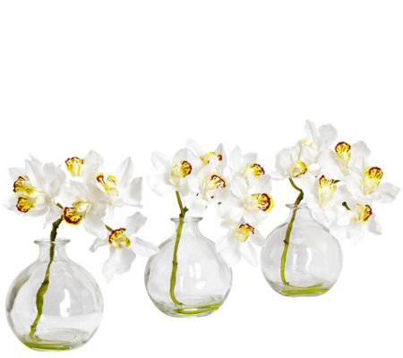 Set of 3 Cymbidium w/Vase Arrangements by Nearly Natural
