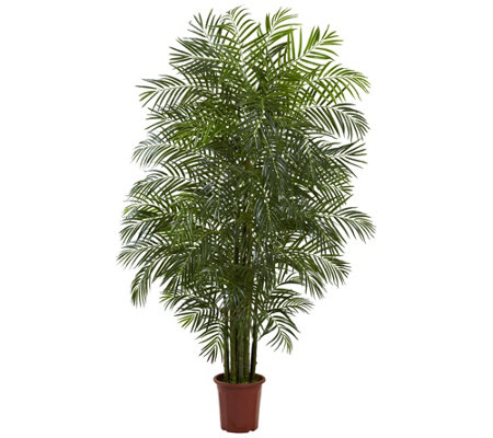 7 5 Areca Palm By Nearly Natural