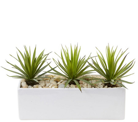Mini Agave In Rectangular Ceramic Planter By Nearly Natural